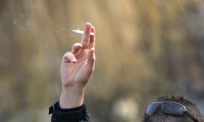 Остър спор се разгоря в парламента какво е по-вредно - тютюнът или патладжанът