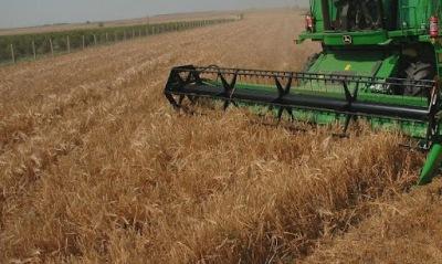 Бившата земеделска пиарка се оказа и крупна земевладелка