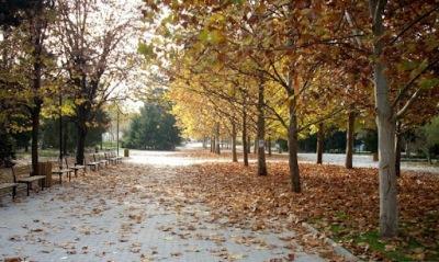 Сравнително топъл октомври ни очаква тази година