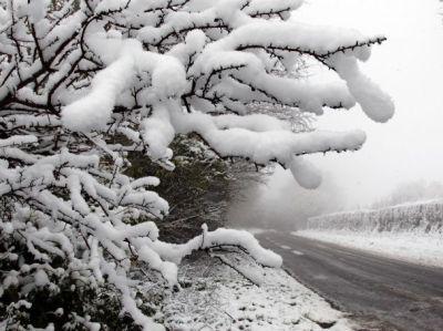 Средната месечна температура през декември